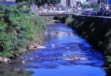 Rio Jundiaí volta a ter peixes
